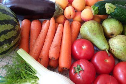 Courses en fruits et légumes